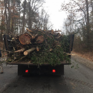 land clearing in milford va, ashland va  and bowling green va